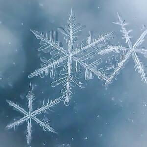 Auftauen & Frostschutz